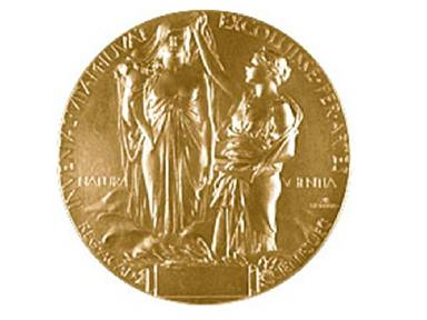 The Nobel Medal for Physics
