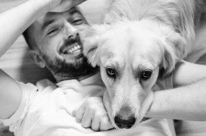 Leadership & Dogs